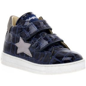 Xαμηλά Sneakers Naturino FALCOTTO 2C06 SASHA BLEU
