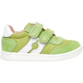 Xαμηλά Sneakers Falcotto 2014666 01
