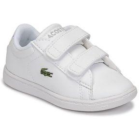 Xαμηλά Sneakers Lacoste CARNABY EVO BL 21 1 SUI ΣΤΕΛΕΧΟΣ: Συνθετικό & ΕΠΕΝΔΥΣΗ: Ύφασμα & ΕΣ. ΣΟΛΑ: Ύφασμα & ΕΞ. ΣΟΛΑ: Καουτσούκ