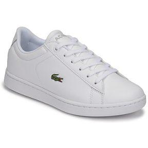 Xαμηλά Sneakers Lacoste CARNABY EVO BL 21 1 SUJ ΣΤΕΛΕΧΟΣ: Συνθετικό & ΕΠΕΝΔΥΣΗ: Ύφασμα & ΕΣ. ΣΟΛΑ: Ύφασμα & ΕΞ. ΣΟΛΑ: Καουτσούκ