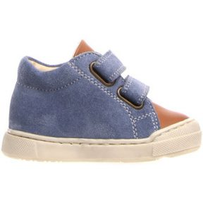 Xαμηλά Sneakers Falcotto 2014608 01