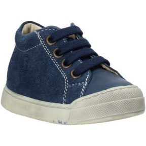 Xαμηλά Sneakers Falcotto 2014601 01