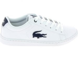 Xαμηλά Sneakers Lacoste Carnaby Evo C Blanc Bleu