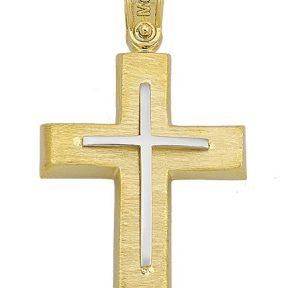 Σταυρός από Χρυσό 14Κ με Λευκόχρυση Λεπτομερεια SIO14767